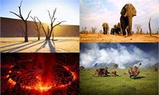 AFRIKA - DAS MAGISCHE KÖNIGREICH - Kinostart am 5. März 2015 im Verleih der Constantin Film