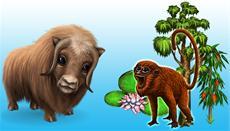 Amazonashaus in My Free Zoo wächst weiter