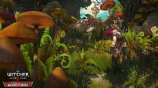 Fünf neue Screens zur Witcher-Erweiterung Blood & Wine (PS4, Xbox One, PC) veröffentlicht - PAX-Panel am Samstag auf Twitch
