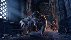 The Elder Scrolls Online | Wolfhunter Verlies-DLC und Update 19 ab sofort auf PS4 und Xbox One