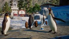 Planet Zoo sorgt mit dem Aquatic Pack für Wasserspaß